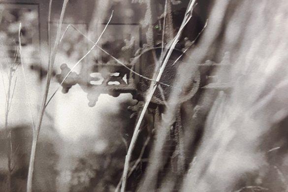 """Fotografie Leszka Żurka<br />""""Lutry. Dokument wyobrażony""""<br />– wystawa w&nbsp;Zielonej Bramie"""